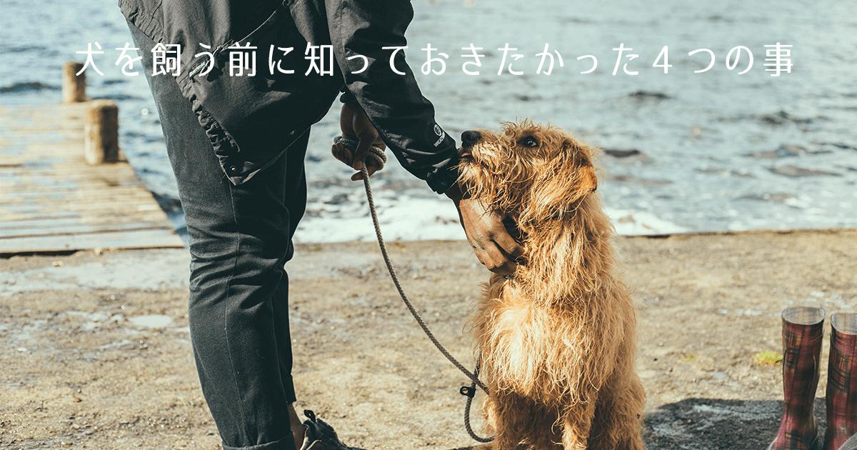 犬を飼う前に知っておきたかった4つの事
