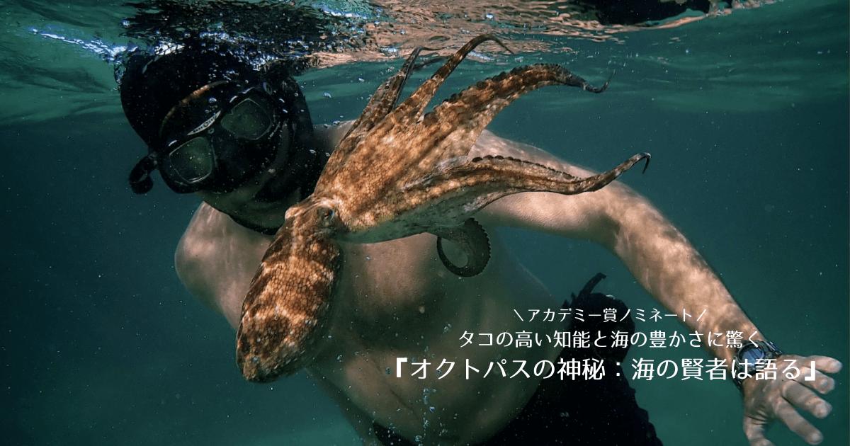 アカデミー賞ノミネート!タコの高い知能と海の豊かさに驚く映画『オクトパスの神秘 海の賢者は語る』